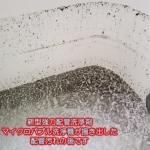 井戸水環境&石油給湯式風呂釜での風呂釜配管マイクロバブル洗浄